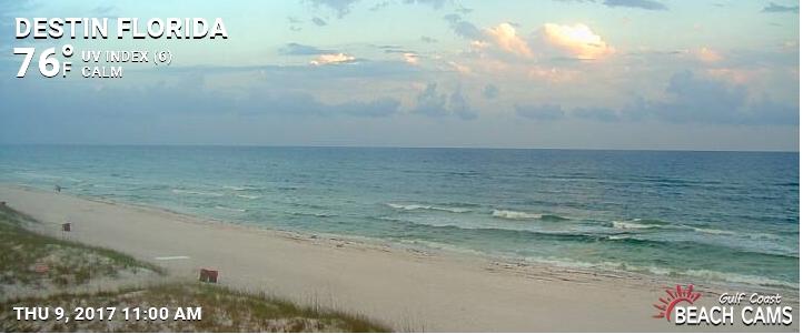 Check out our live beach cam - Shore Dreams Pet Adventures (tm): Pet-WELCOMING..